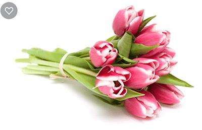 Image d'un bouquet de fleurs